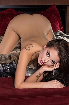 Playboy Mashup